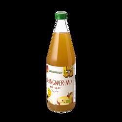 Schoenenberger® Apfel-Ingwer-Mix Bio-Saft